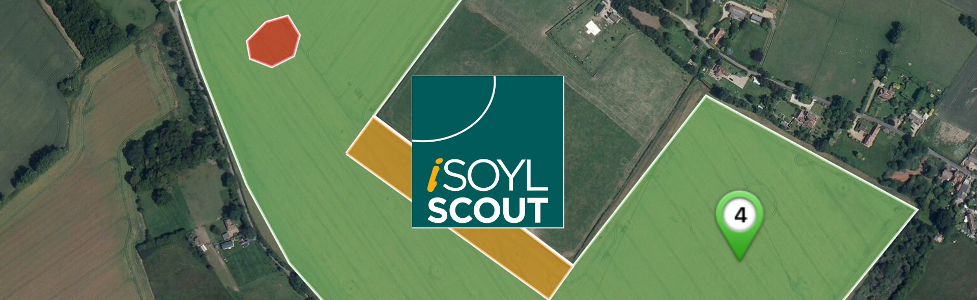 isoylscout banner